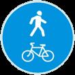 Билет ПДД №5: Какие из указанных знаков запрещают движение водителям мопедов?